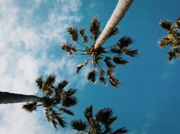 Mindful retreat Santa Monica